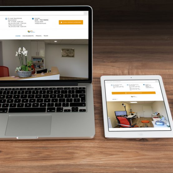 Abgebildet ist ein Screenshot der Referenz Webseite Epido